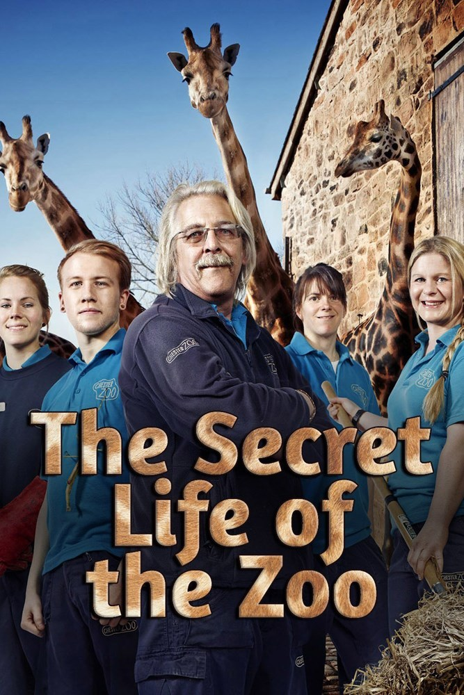The Secret Life Of The Zoo – Season 4